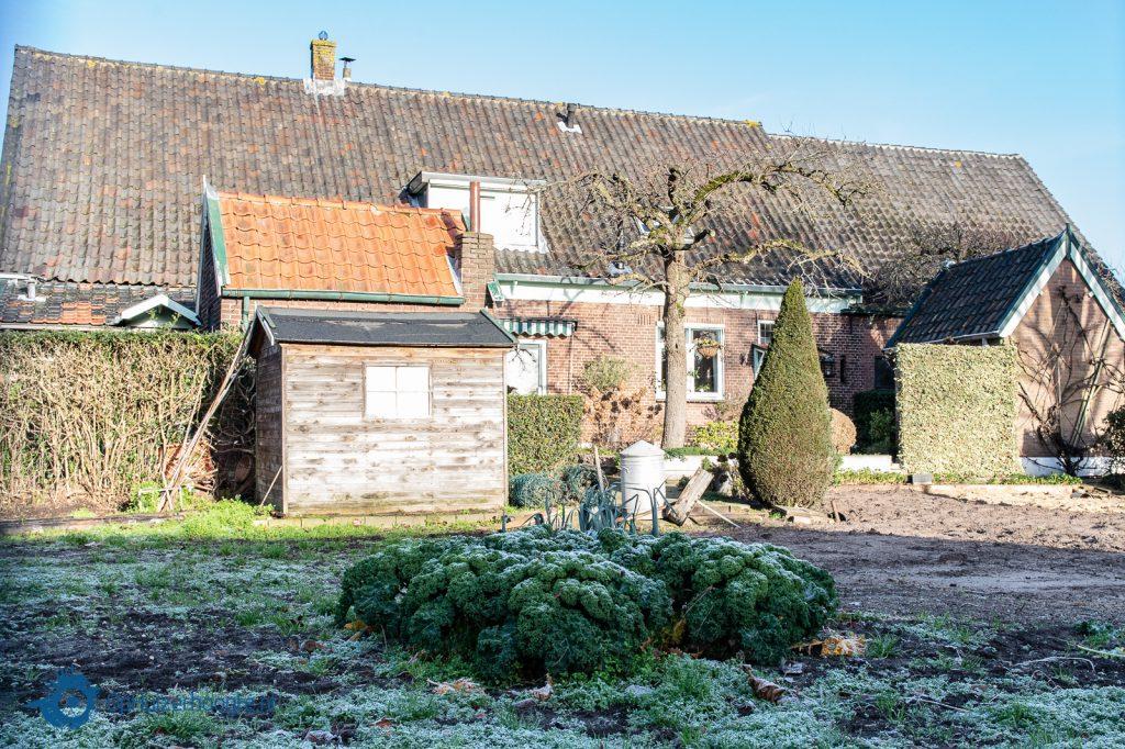 boerenkool huizen ophuizerhoogte