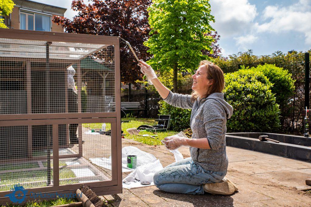 Kippen Voor Anker NLdoet Huizen