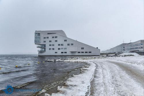 20210208-Pier-van-ijs-6